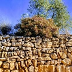 La pedra seca a la 56a Fira de l'Oli i les Garrigues