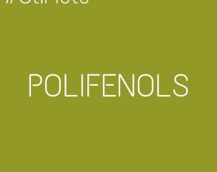 #OliMots – Polifenols
