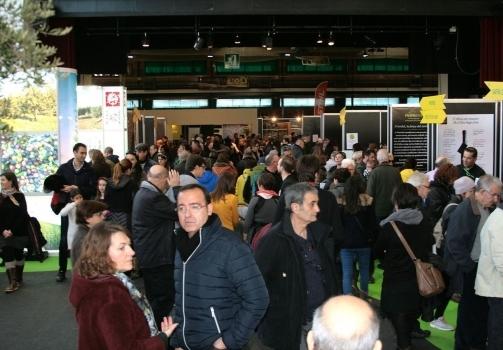 La pròxima Fira de l'Oli i les Garrigues es vol promocionar a l'Estat espanyol